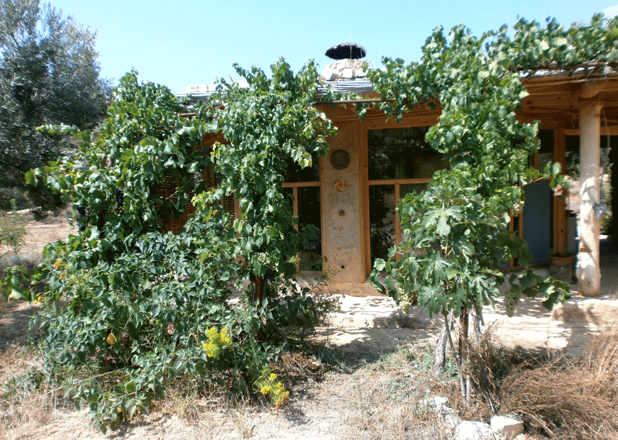 The Casita disappears under the Treille