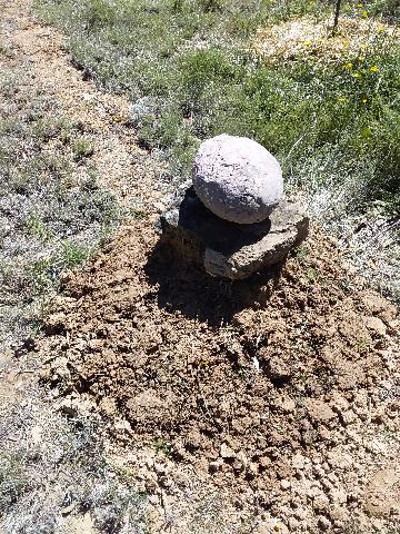 La cerise sur le drainage
